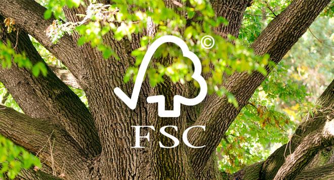 FSC Zeichen auf Baum