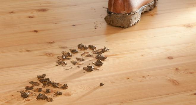 Reinigung und Pflege eines Holzboden