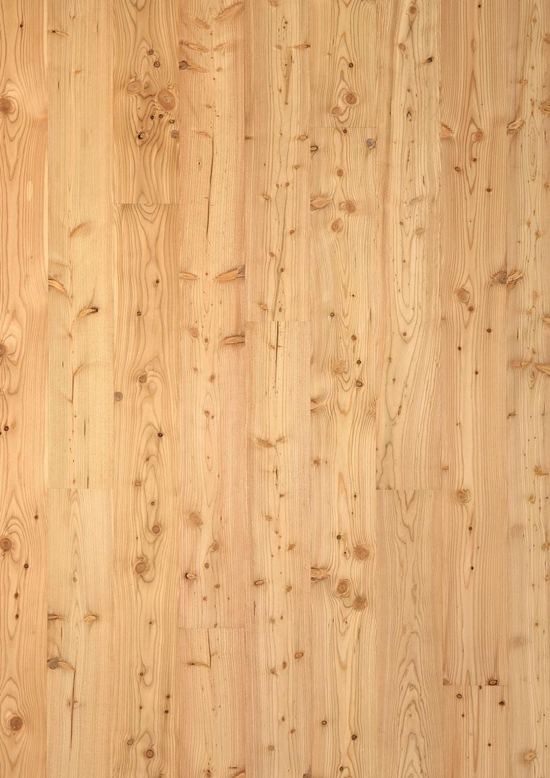 feel wood massivholzdiele heimische laerche serafin campestrini gmbh ihr partner in sachen holz. Black Bedroom Furniture Sets. Home Design Ideas