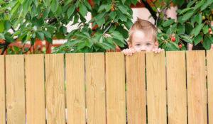 Zaun und Sichtschutz